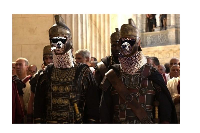CenturionLlamas.jpg