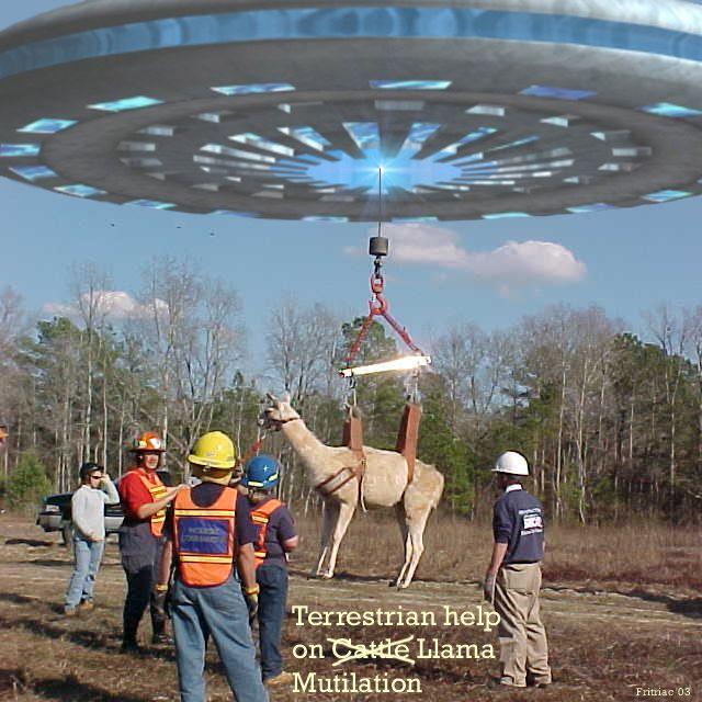 alien_llama_mutilation.jpg