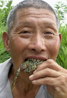 man eats tree frogs.jpg