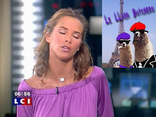 mellisa_theuriau_llamas.jpg